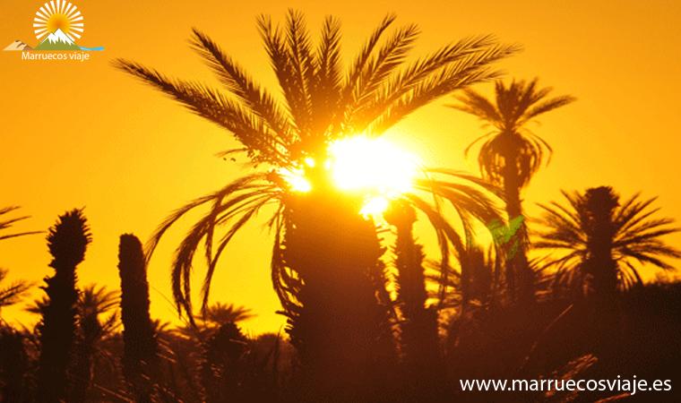 excursion al sur de marruecos atlas y desierto