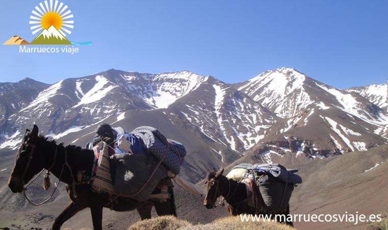 trekking en el atlas central, circo de taghia , el valle feliz, el pico de mgoun